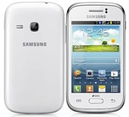 Galaxy Young S6312